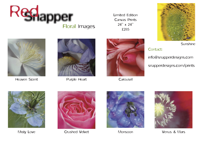 Floral Images - Limited Edition
